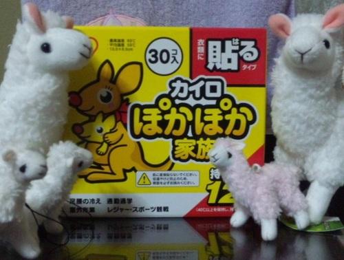 DVC00001-001ぽかぽか♪.jpg