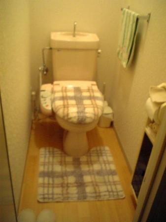 DVC00065綺麗なトイレです~♪.jpg