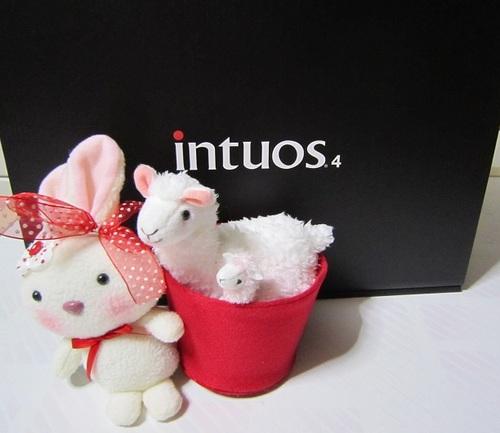 IMG_20111001-TOP-wacom intuos4-440-K0♪.jpg