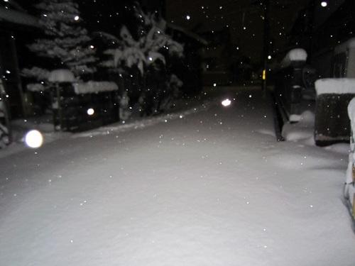 IMG_20120126-001大雪です~♪.jpg