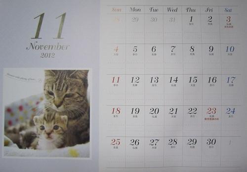 IMG_20121113-001にゃんこ♪.jpg