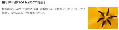 ss_20110810-002-PowerShot A3300.jpg