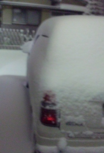 DVC00005-TOP大雪なの♪.jpg