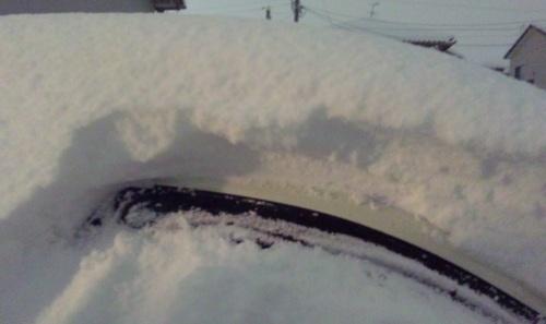 DVC00008-003大雪なの♪.jpg
