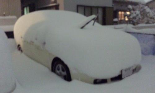 DVC00008-TOP大雪なの♪.jpg