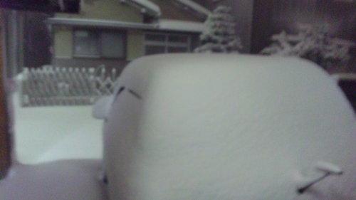 DVC20110116-1大雪なの.JPG