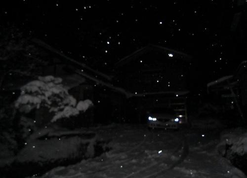 IMG_20120130-001大雪です~♪.jpg