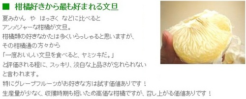 ss20130307-005土佐文旦♪.jpg