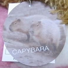 ss_20111216_TOP-KAPYBARAさん♪.jpg